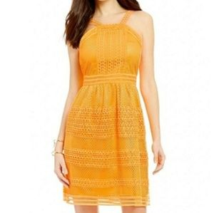 🆕 TAHARI Honey On My Mind Mini Lace Dress Size 4